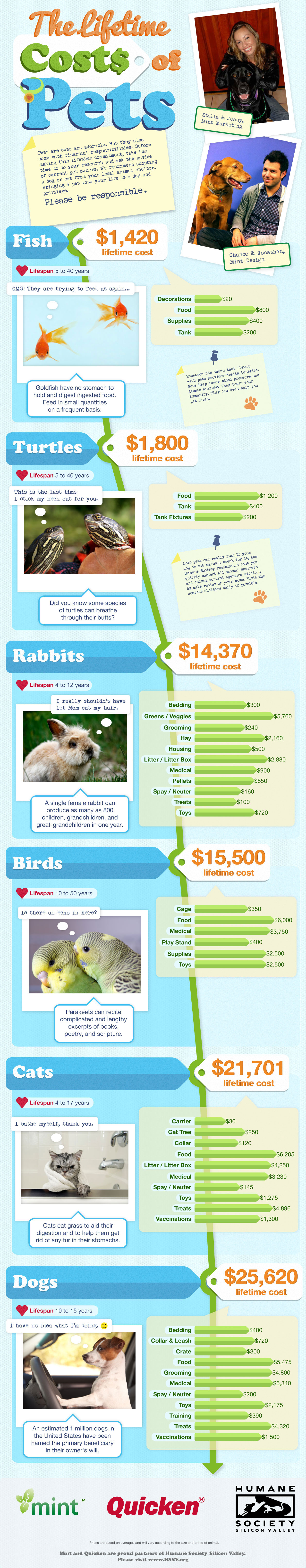 the-lifetime-costs-of-pets-infographic