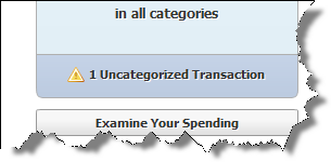 See Where Your Money Goes: How to Categorize and Update Your Transactions in Quicken